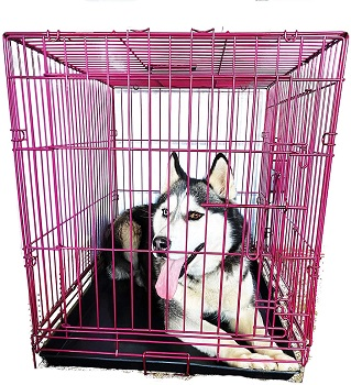 BEST OF BEST EXTRA LARGE PINK DOG CRATE
