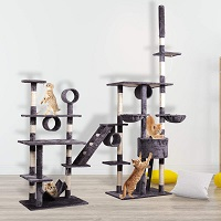 BWM.Co Crazy Large Huge Cat Tree Summary