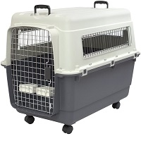 Best Airline Approved Intermediate Plastic Kennels Summary