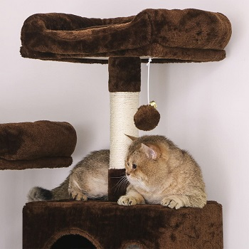 Best Big Cat Tree With Large Perches