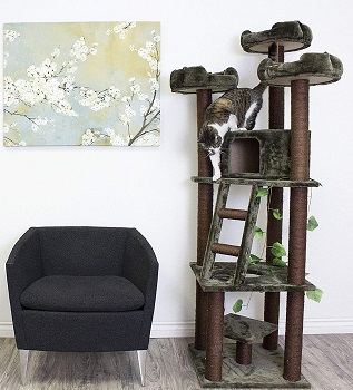 Best Cat Tree With Branches