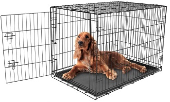 Best Cheap Intermediate Carlson Pet Products Metal Dog Crate