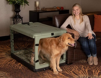 Best Folding Large Indoor 4 Door Steel Crate