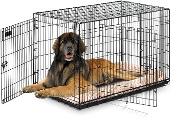 Best For Puppies Large Double Door Precision Pet Great Crate