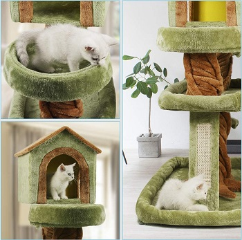 Best Limbs Cat Tree With Branches