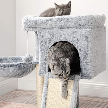 Best Small Cat Tree With Large Perches