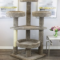 Best Spacious Cat Tree With Large Perches Summary