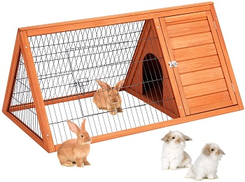 Best Wooden With Run Esright Hutch