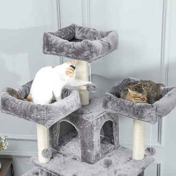 Best multi-level cat tree with hammock for large cats