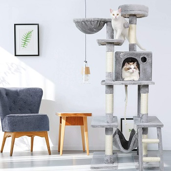 Best tall cat tree with hammock for large cats