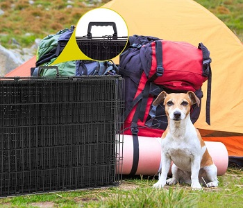 BestPet 30-in Medium Dog Crate