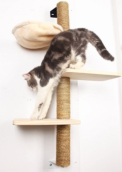 Big Nose Wall Tall Cat Tree Review