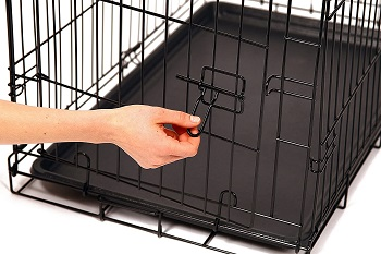 Carlson Pet Products Secure Dog Crate Review