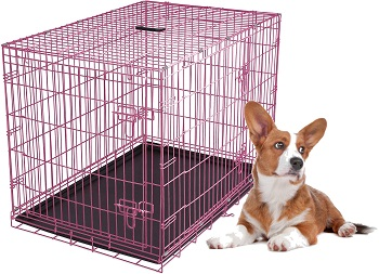 Internet's Best Wire Dog Kennel