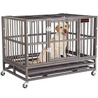 Keren Military Pet Kennel Summary