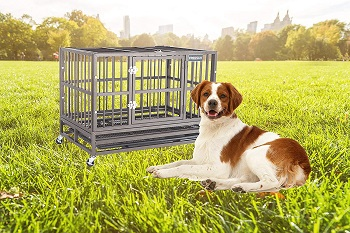 Keren Military Pet Kennel