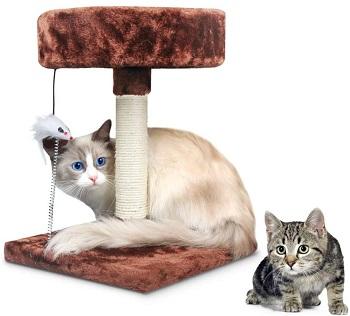 Korimefa Kitten Cat Tree With Perch Review