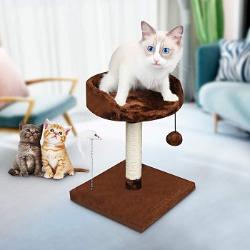 Korimefa Kitten Cat Tree With Perch