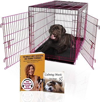 Pet Expressions Foldable Dog Crate