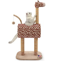 TopKitch Giraffe Fun Activity Tree Summary