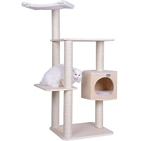 best cat tree with large perches summary