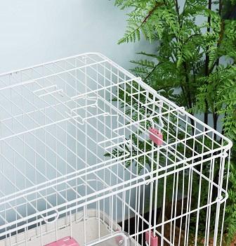 pawhut 2 level cage