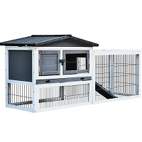 BEST 2 STORY HUTCH FOR TWO RABBITS summary