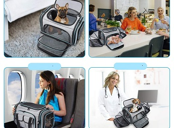 BEST AIRLINE APPROVED EXPANDABLE DOG CRATE