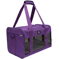 BEST AIRLINE APPROVED FASHION DOG CRATE Summary