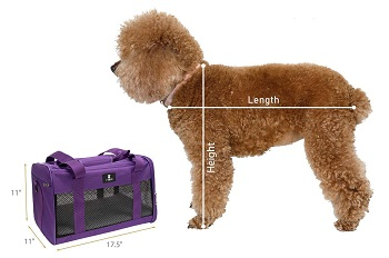 BEST AIRLINE APPROVED FASHION DOG CRATE