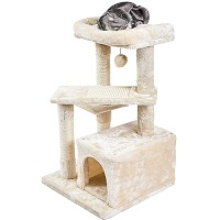 BEST CARPETED CAT TREE FOR ADULT CATS summary