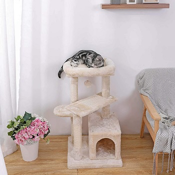 BEST CARPETED CAT TREE FOR ADULT CATS