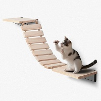 BEST CAT WALL JUNGLE GYM WITH LADDER summary