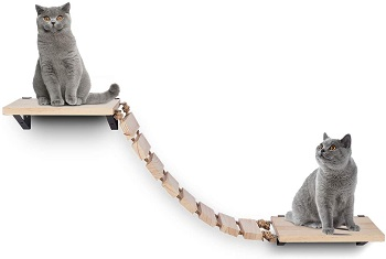 BEST CAT WALL JUNGLE GYM WITH LADDER