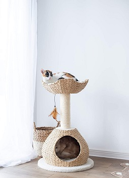 BEST CORNER BOHO CAT TREE