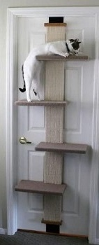 BEST DOOR CAT CLIMBING STRUCTURE