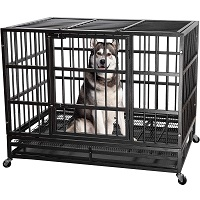 BEST EXTRA LARGE HEAVY DUTY DOF CRATE FOR SEPARATION ANXIETY Summary