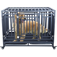 BEST EXTRA LARGE HEAVY METAL DOG CRATE Summary