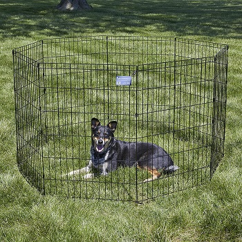 BEST FOLDING DOG CRATE PLAYPEN