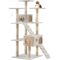 BEST FOR LARGE CATS 72 IN TREE summary