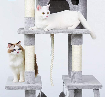 BEST FOR LARGE CATS ACTIVITY TREE