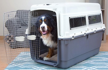 BEST FOR TRAVEL EXTRA TALL DOG CRATE