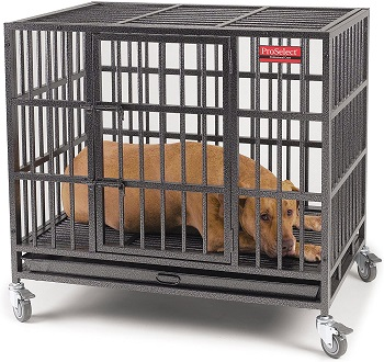 BEST HEAVY DUTY DOG CAGE FOR PITBULL