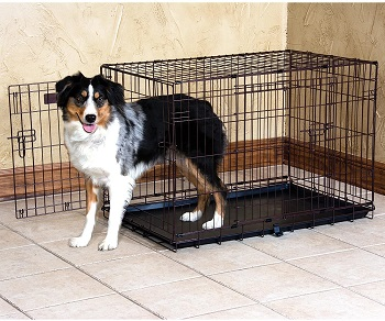 BEST INDOOR EXPANDABLE DOG CAGE