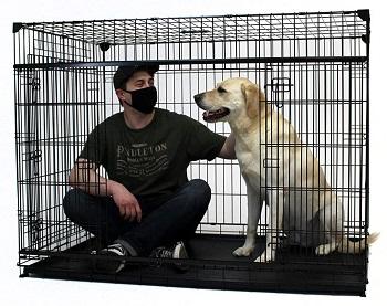 BEST INDOOR LARGE TWO DOOR DOG CRATE