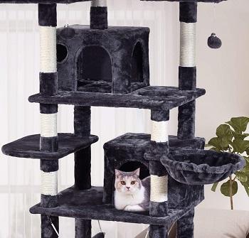 BEST LARGE ADULT CAT TREE