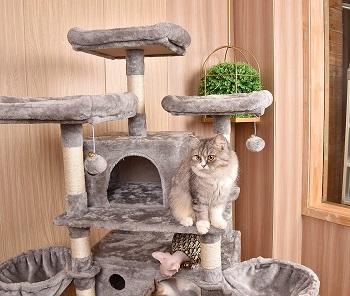 BEST LARGE BEAUTIFUL CAT TREE