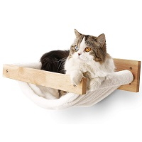 BEST LARGE CATS CAT CLIMBING SHELVES summary