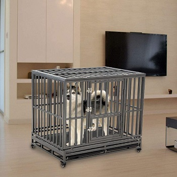 BEST LARGE HEAVY DUTY DOG CRATE FOR SEPARATION ANXIETY