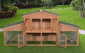 BEST LARGE RABBIT HUTCH FOR 2 RABBITS